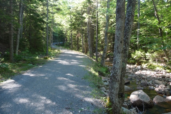 Acadia Carriage Road