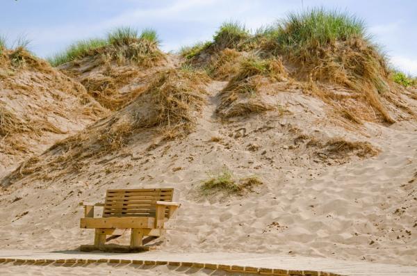 Park Bench at Sleeping Bear Dune National Lakeshore